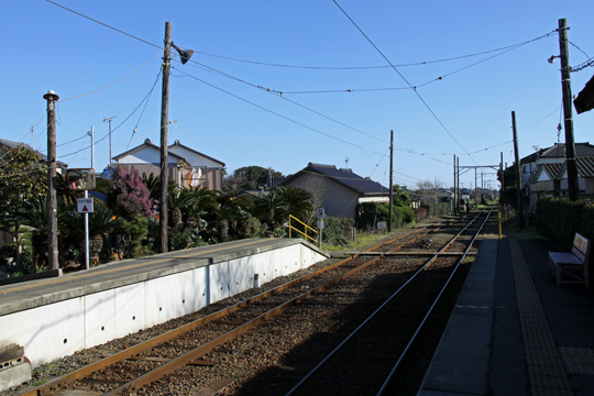 20090125_kasagamikurohae-07.jpg