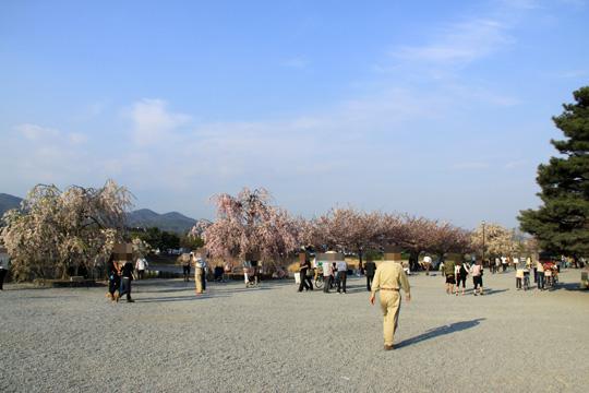 20090412_arashiyama-01.jpg