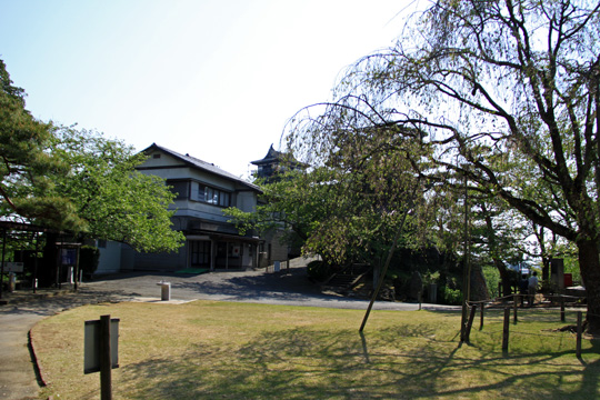 20090429_maruoka_castle-31.jpg