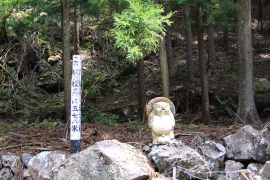 20090503_kanzo-01.jpg