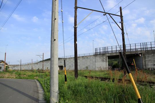 20090503_shin_kanaya-09.jpg