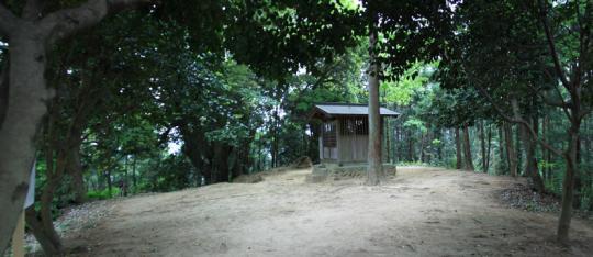 20090505_hachioji_castle-05.jpg