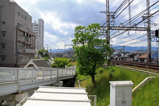 20090531_mukogawa-01.jpg
