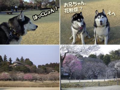 2_20080527122526.jpg
