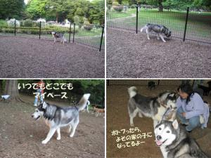 image2_20080520110838.jpg