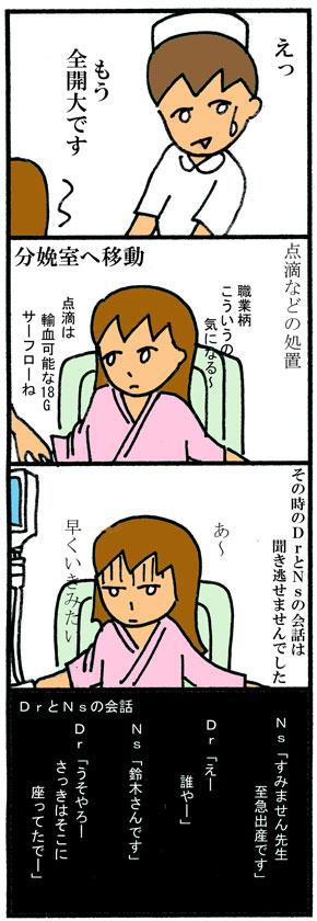 スモモ出産04