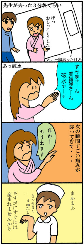 スモモ出産02