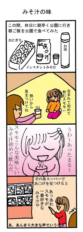 みそ汁の味