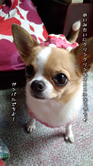 DSC_00590223.jpg