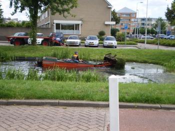 運河掃除?