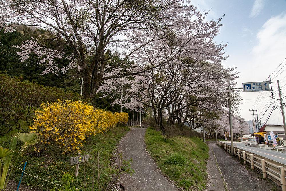 060416chichibu01.jpg