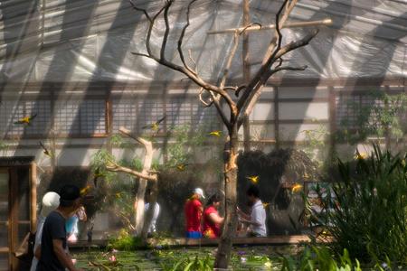ソフト花鳥園1-7