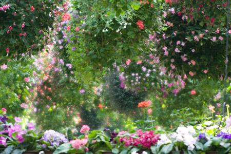 ソフト花鳥園1-8