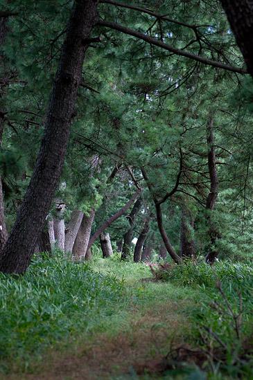 木曽三川公園-10