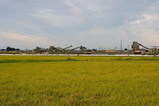 立田へ-11