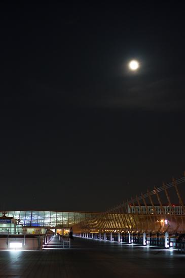 夜セントレア-16