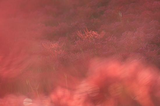 矢勝川-1