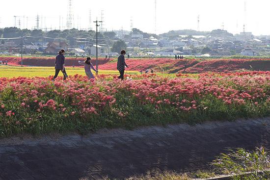 矢勝川-4