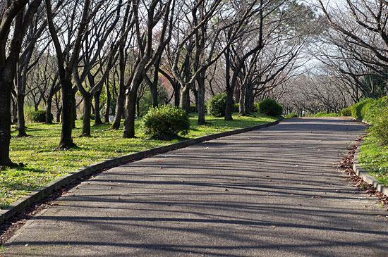 平和公園-3