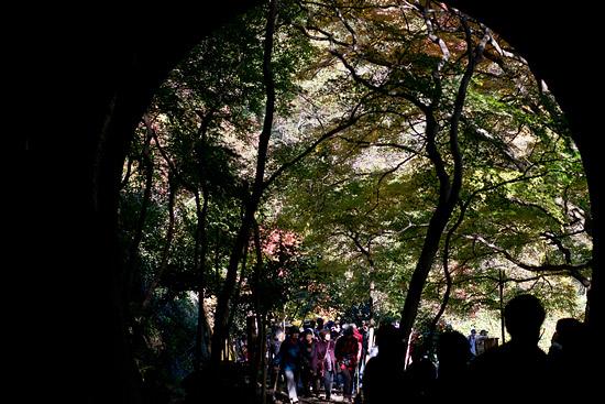 愛岐トンネル-6