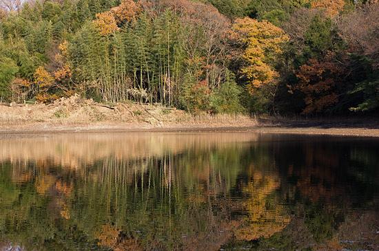 牧野が池-3