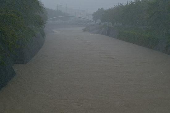 大雨の日-3