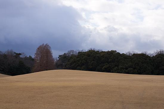 森林公園-3