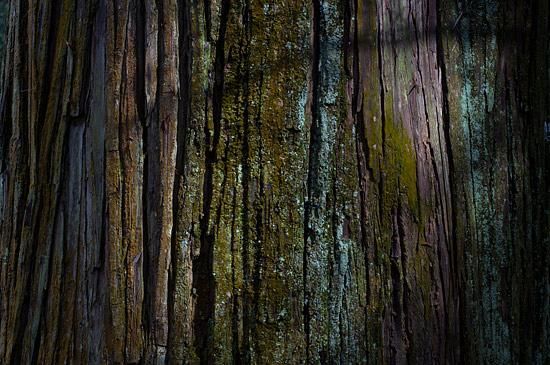 金峯神社-10