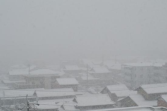 雪の風景-1