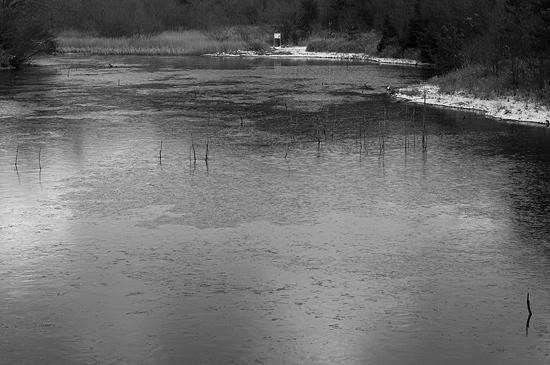 残雪海上の森-5