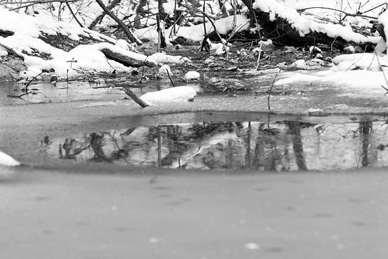 残雪海上の森-9