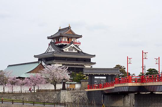 桜便り19-9