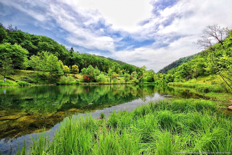 さんぽふぉと Sanpophoto 無料壁紙 Hdr 緑の風景